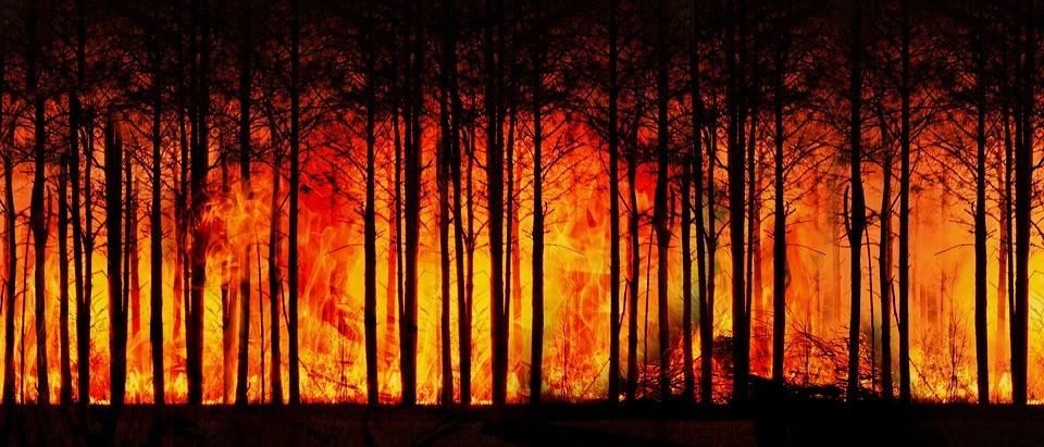 ipcc uyardi iklim degisikligini sinirlandirmak icin derhal harekete gecilmeli